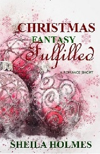 Christmas Fantasy Fulfilled (small cover) little